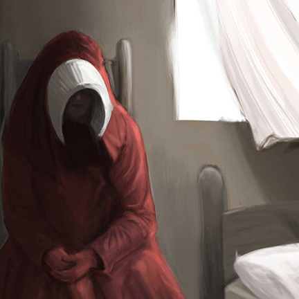 An image of a lady in red for the cover of a handmaid's tale